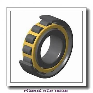 FAG NJ306-E-M1  Cylindrical Roller Bearings