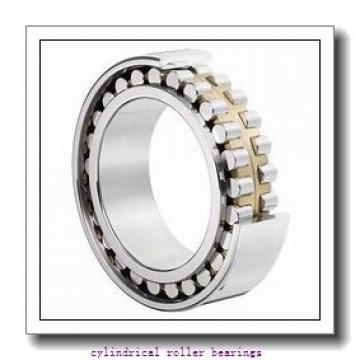 105 x 8.858 Inch | 225 Millimeter x 1.929 Inch | 49 Millimeter  NSK N321W  Cylindrical Roller Bearings