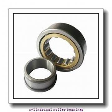 FAG NJ305-E-M1-C3  Cylindrical Roller Bearings