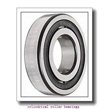 50 mm x 90 mm x 23 mm  FAG NJ2210-E-TVP2  Cylindrical Roller Bearings