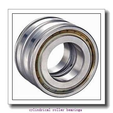 3.346 Inch | 85 Millimeter x 7.087 Inch | 180 Millimeter x 1.614 Inch | 41 Millimeter  NSK N317WC3  Cylindrical Roller Bearings